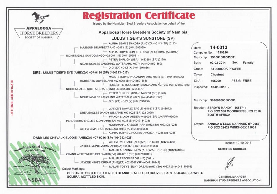 Sunny NSBA Certificate (Namibia)