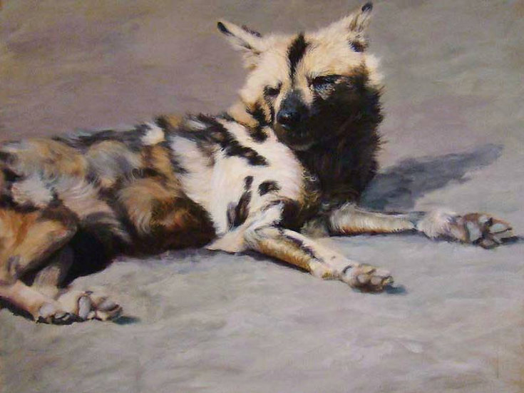 """Wild Dog"" - Original Acrylic Painting - by Anni Crouter (USA)"