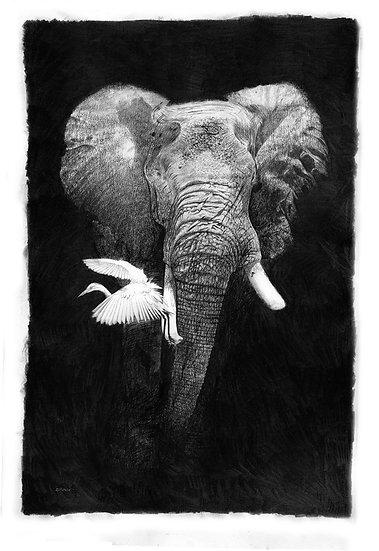 """""""Earthmover"""" - Fine Art Print by Phillip Allder - UK"""