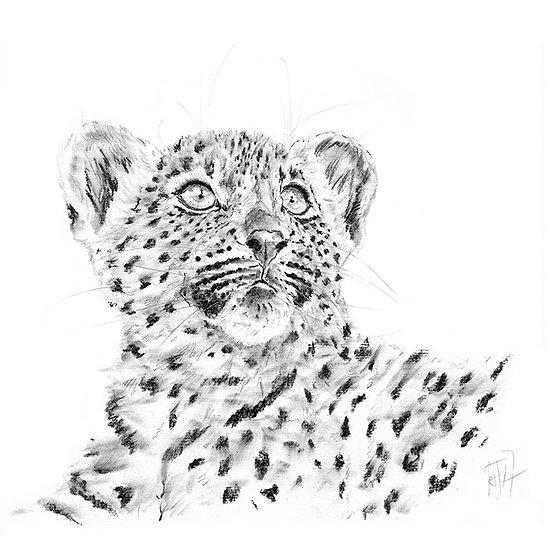 """Little Hunters"" - Greeting Card single - Leopard"