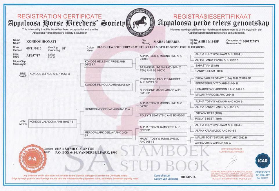 Kondos Hionati AHBSSA Certificate (South Africa)