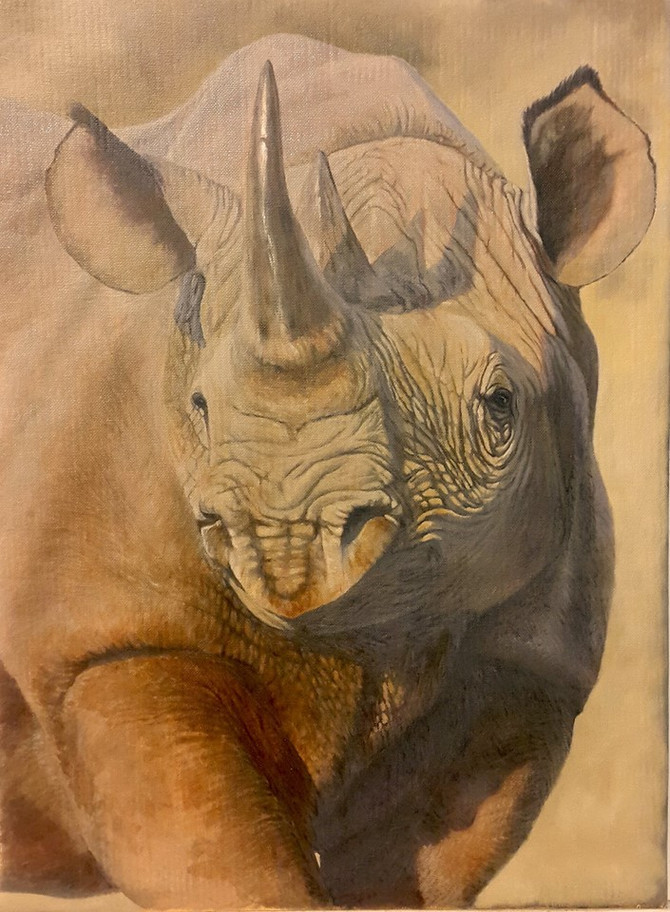Save the Rhino Trust Raffle
