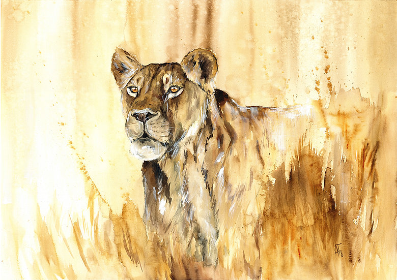 """encounter"" - original watercolour painting - by Annika Funke - Namibia"