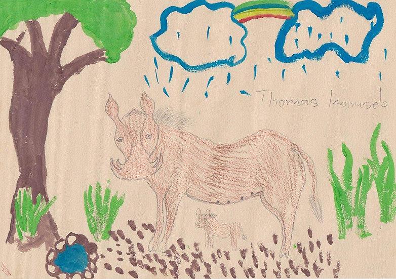"""warthog"" - by Thomas - Namibia"