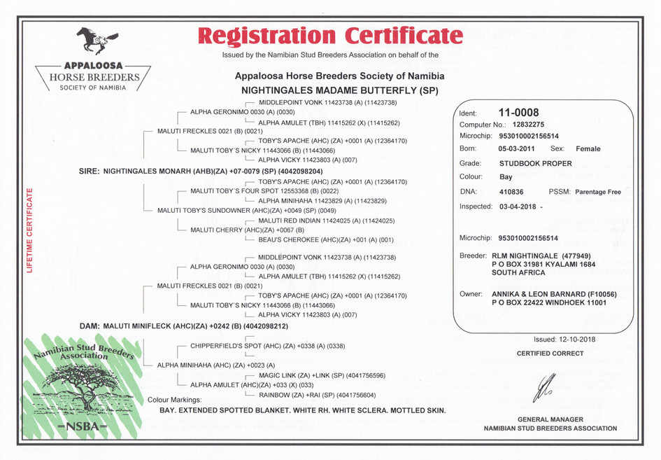 Nightingales Madame Butterfly AHBSN Certificate (Namibia)