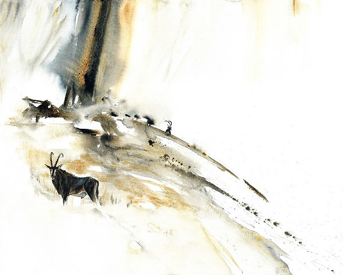 """golden rain"" - original watercolour painting - by Annika Funke (Namibia)"