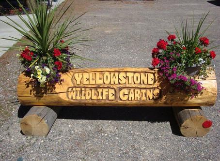Yellowstone Wildlife Cabins, West Yellowstone Montana!
