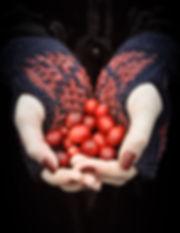Mozaikucranberry.jpg