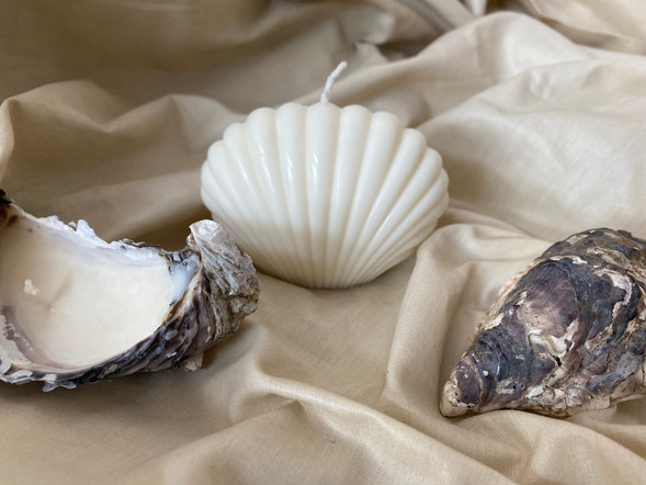 Ariel Shell Candle & Oyster Tea Lights