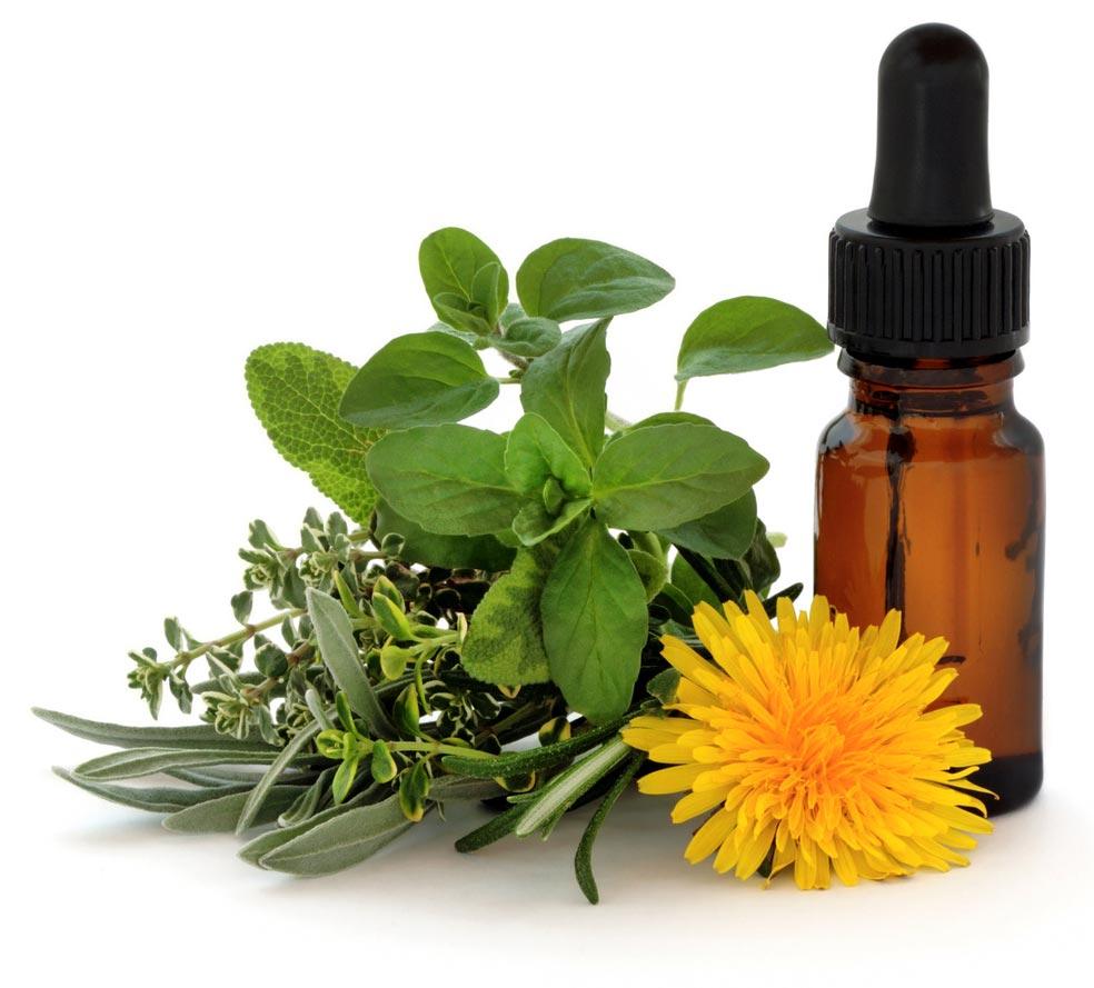 Terapia-Floral-2_2jpg