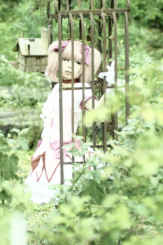 鹿目まどか(魔法少女まどか☆マギカ)