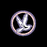 Bird Logo Icon.png