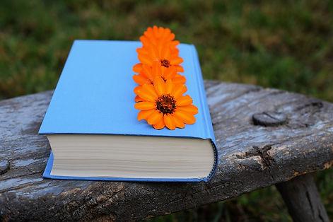 book-2641344_960_720.jpg