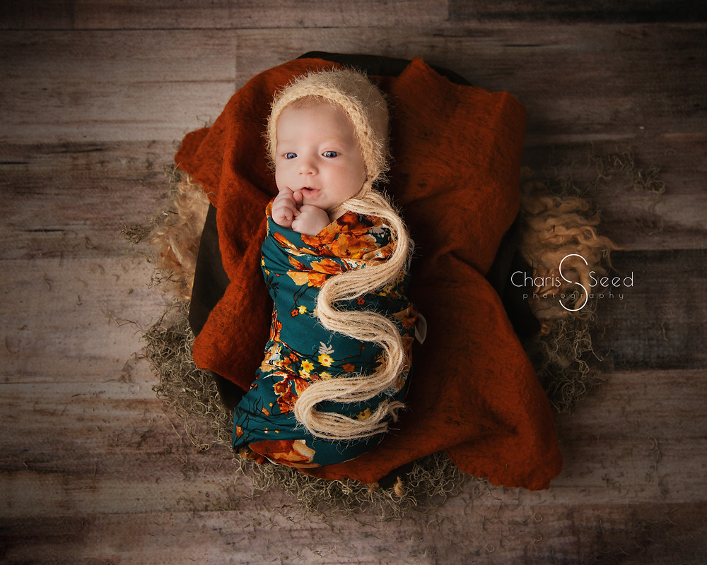 Newborn girl in fall colors