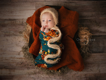 Fall in Love with Autumn Newborn Photography
