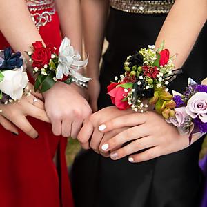 Sage's Prom