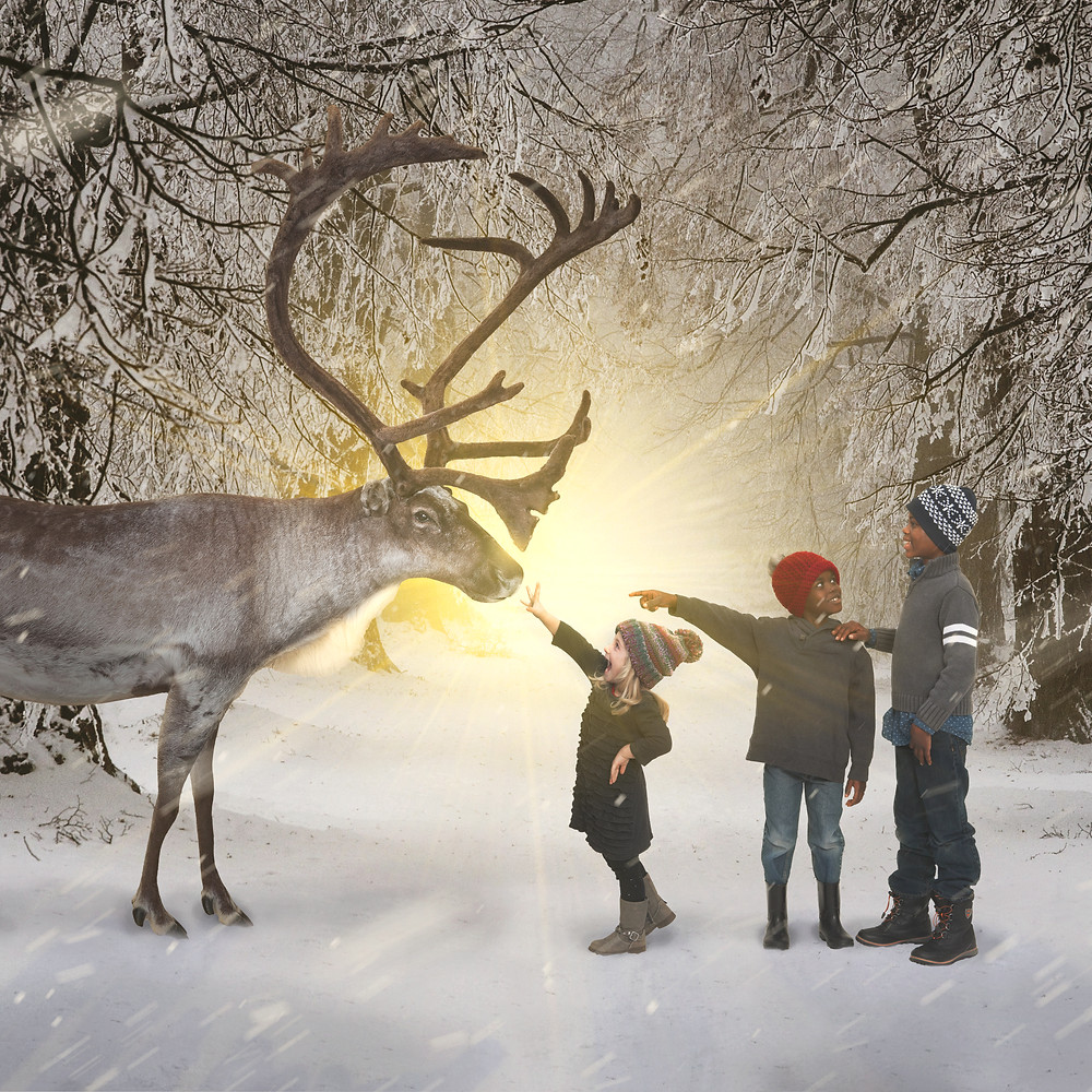 Composite picture children reaching for reindeer