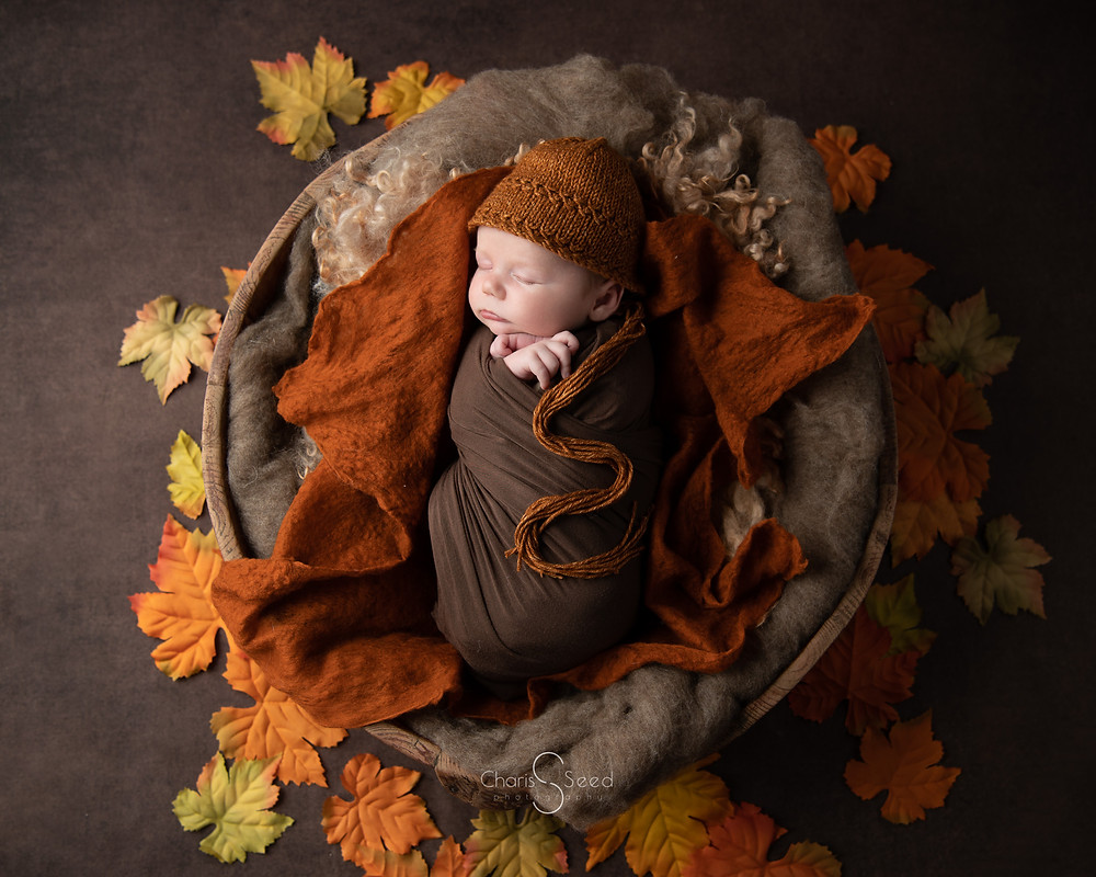 newborn boy with fall leaves around him in a wooden bowl