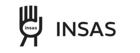 logo_INSAS_small%25252025%252525_edited_