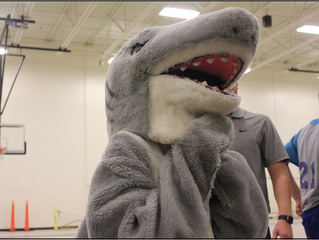 Sharks Win!
