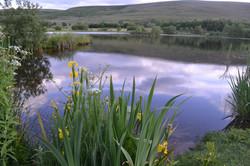 garn-lakes-summer.jpg