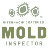 mold-inspector-2.png