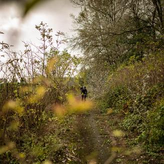 Des plaines aux forêts franciliennes il n'y qu'un pas