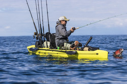 Compass_action_fishing_seagrass_Howie_sh