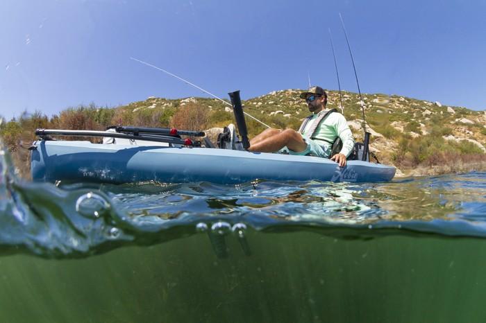 Compass_action_fish_overunder_underwater