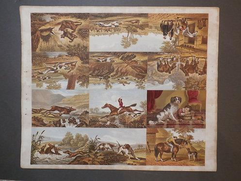 J M Kronheim - Hunting scenes - George Baxter Process - Stag - Ponter Setter - Hare Hunting