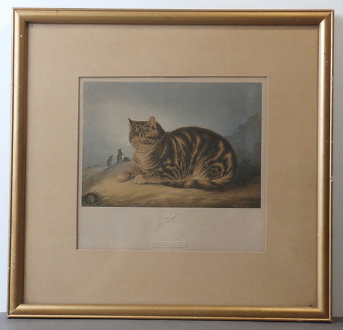 Puss Napping  George Baxter print
