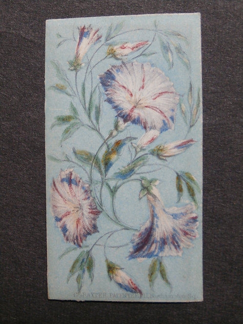 Queen's Floral Needle Box Set - George Baxter Print