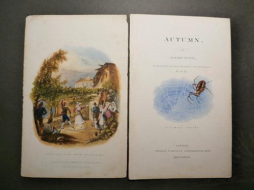Vineyard near Mount St. Bernard AND Autumnal Artist - George Baxter Prints