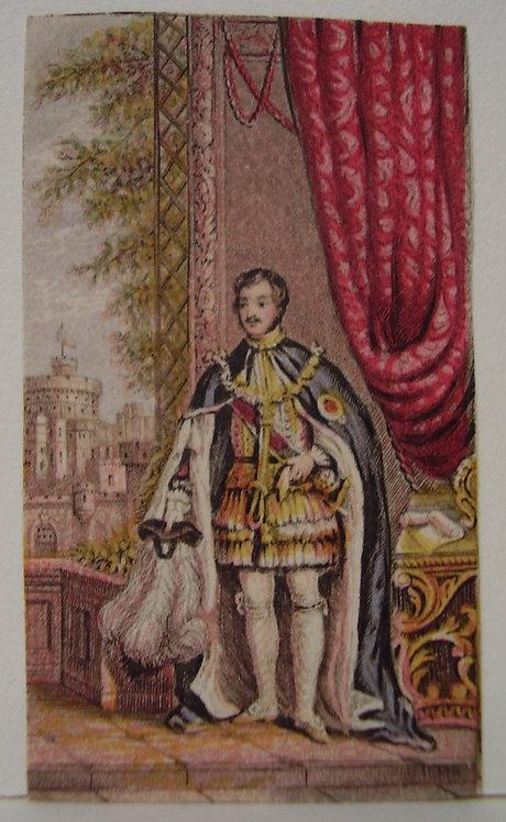 Le Blond - Needlebox Print - Prince Albert