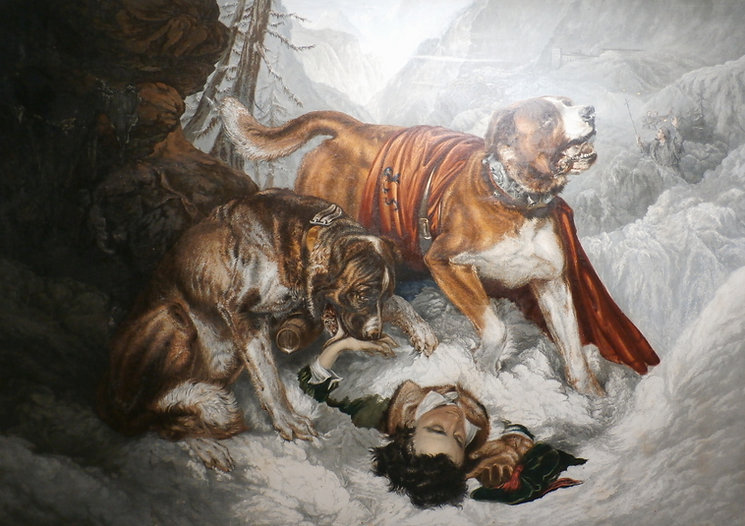 Dogs of St Bernard by George Baxter