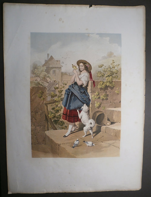 Le Pigeon Favori (The Favourite Pigeon) - Kronheim & Co - Baxter print