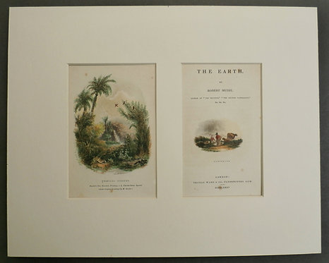 Tropical Scenery AND Temperate - George Baxter Prints