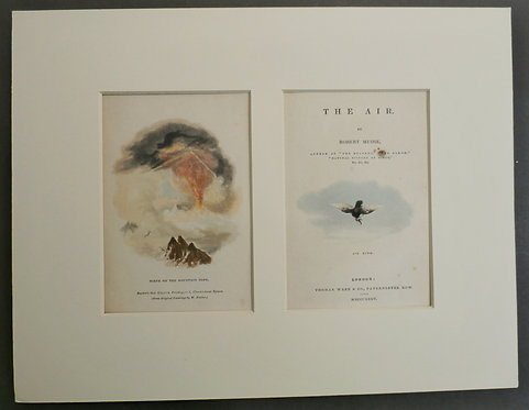 Scene on the Mountain Top AND Air Bird - George Baxter Prints