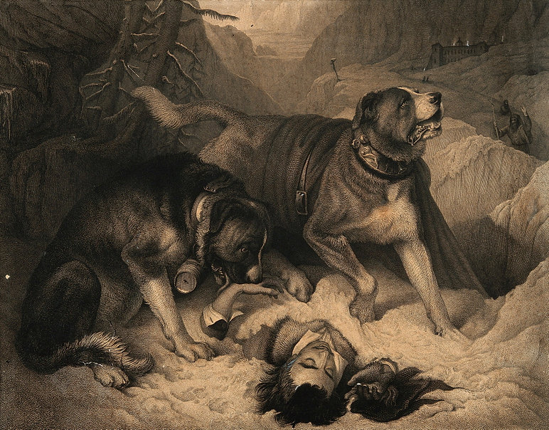 Alpine Mastiffs by John Landseer