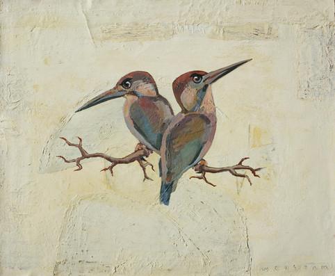 arga fåglar