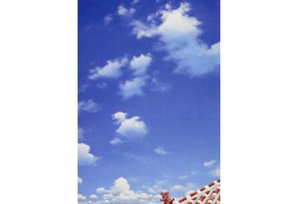 card ポストカード 075