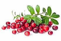 cranberry-skin-benefits.webp