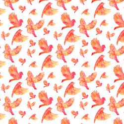 Tropical Flock