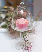 synies pink cupcake rose