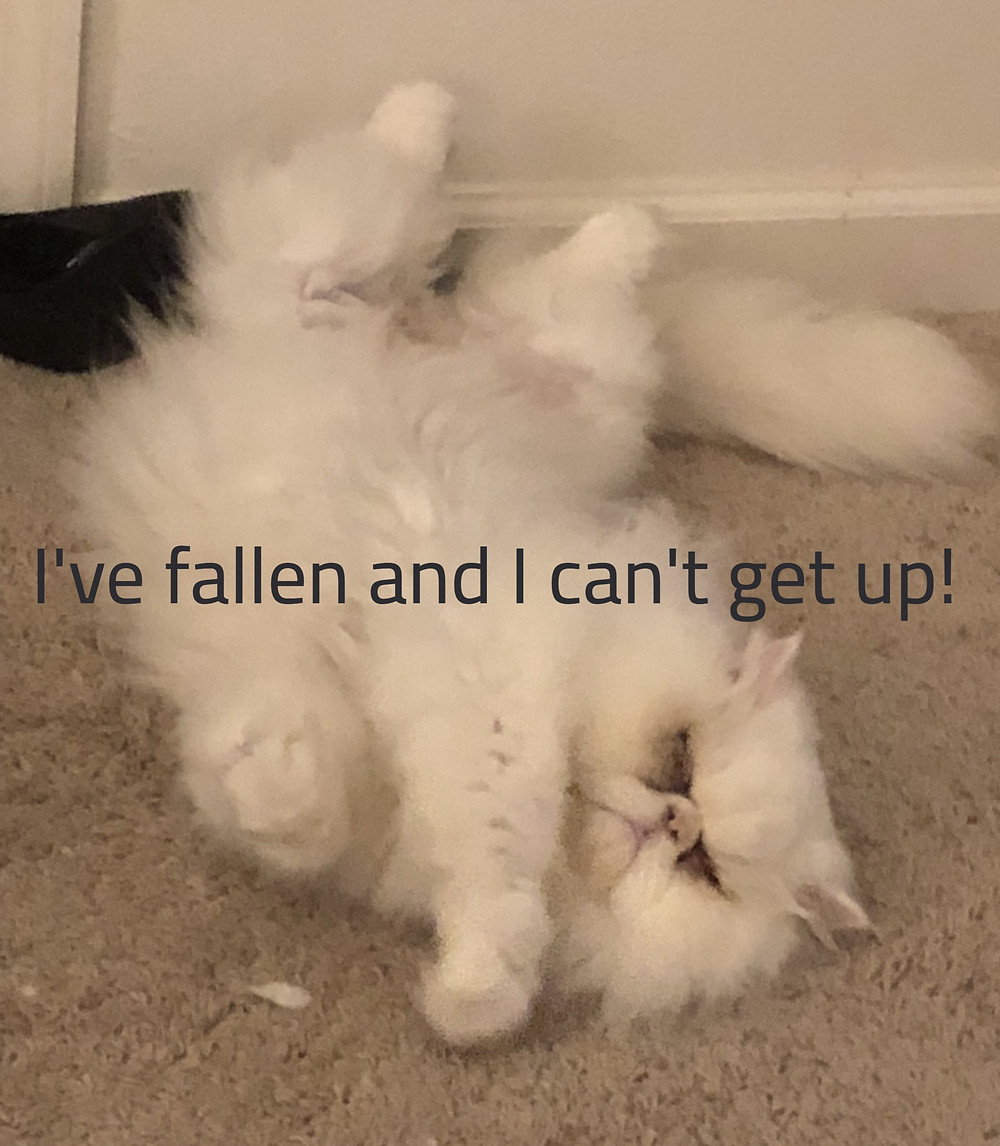 I've fallen, and I can't get up!