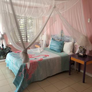 pink room .heic