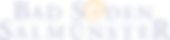 Bad_Soden-Salmuenster_Logo_positiv_edite