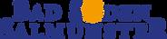 Bad_Soden-Salmuenster_Logo_positiv.png