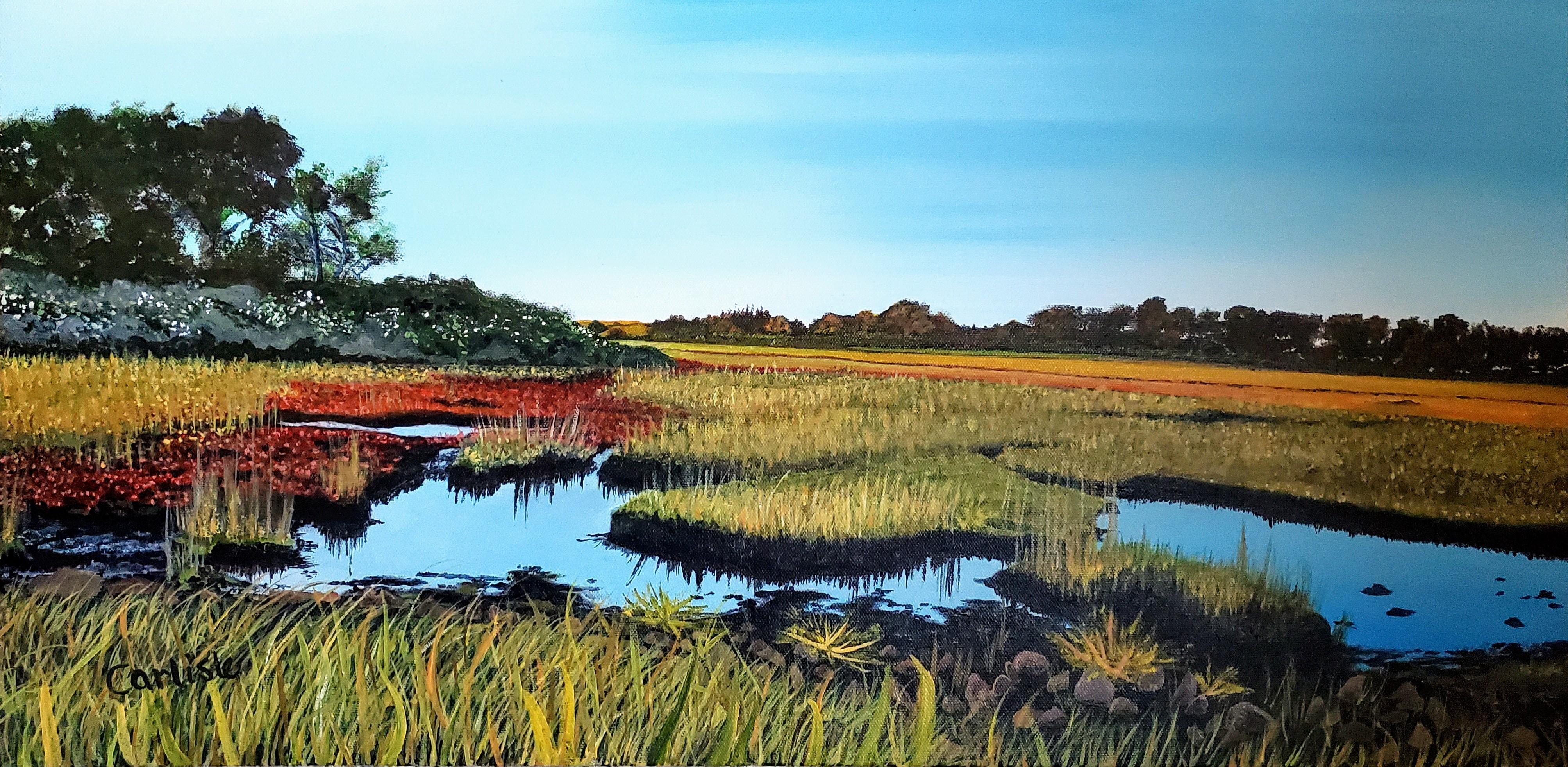 carlisle_phyllis_hammonasset salt marsh