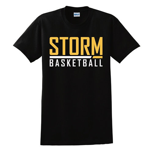 Darlington Storm T-shirt Design 6
